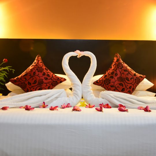 http://pearlgrouphotels.com/wp-content/uploads/2016/07/Superior-deluxe-Honeymoon-Room-1-540x540.jpg