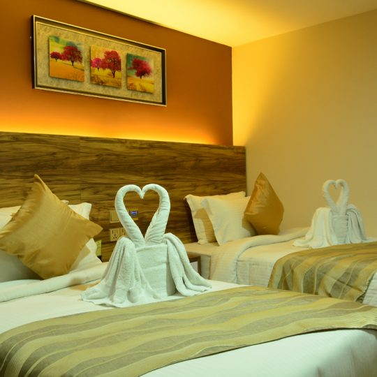 http://pearlgrouphotels.com/wp-content/uploads/2016/07/best_hotel_in_srilanka_Twin_Room_1-540x540.jpg